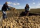 Земеделски стопани избират облагането на доходите