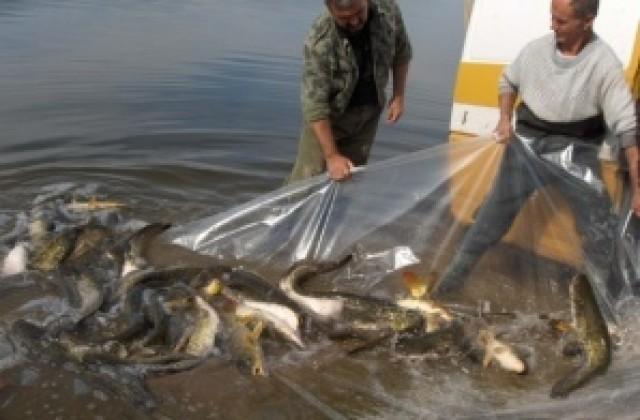 Забранява риболов размножаване сезоне