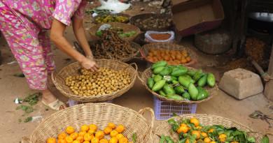 Китайци помагат на екоселище в Камбоджа против бедността