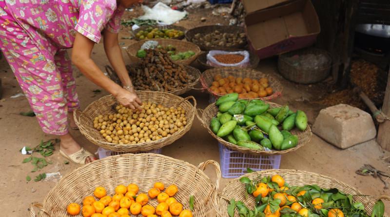 Китайци Екоселище Камбоджа