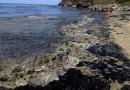 Екокатастрофата в Гърция ще струва поне 500 млн. евро