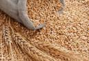 Очакват се до 290 лв. за тон пшеница