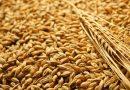 Борсовите цени на зърното спадат