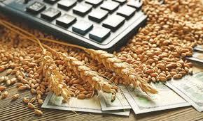 борси зърно цени срив