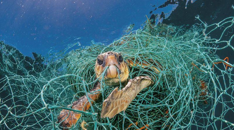 Планета, опазване, пластмаса